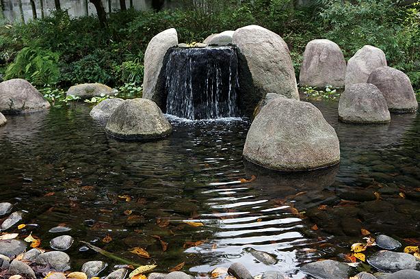 根川緑道の最上流の湧水